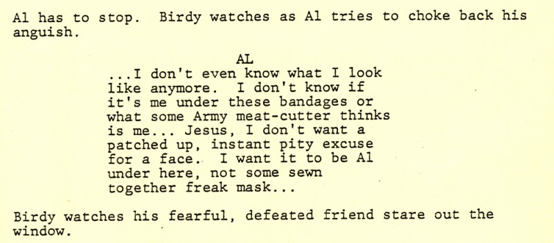 Birdy - script page section